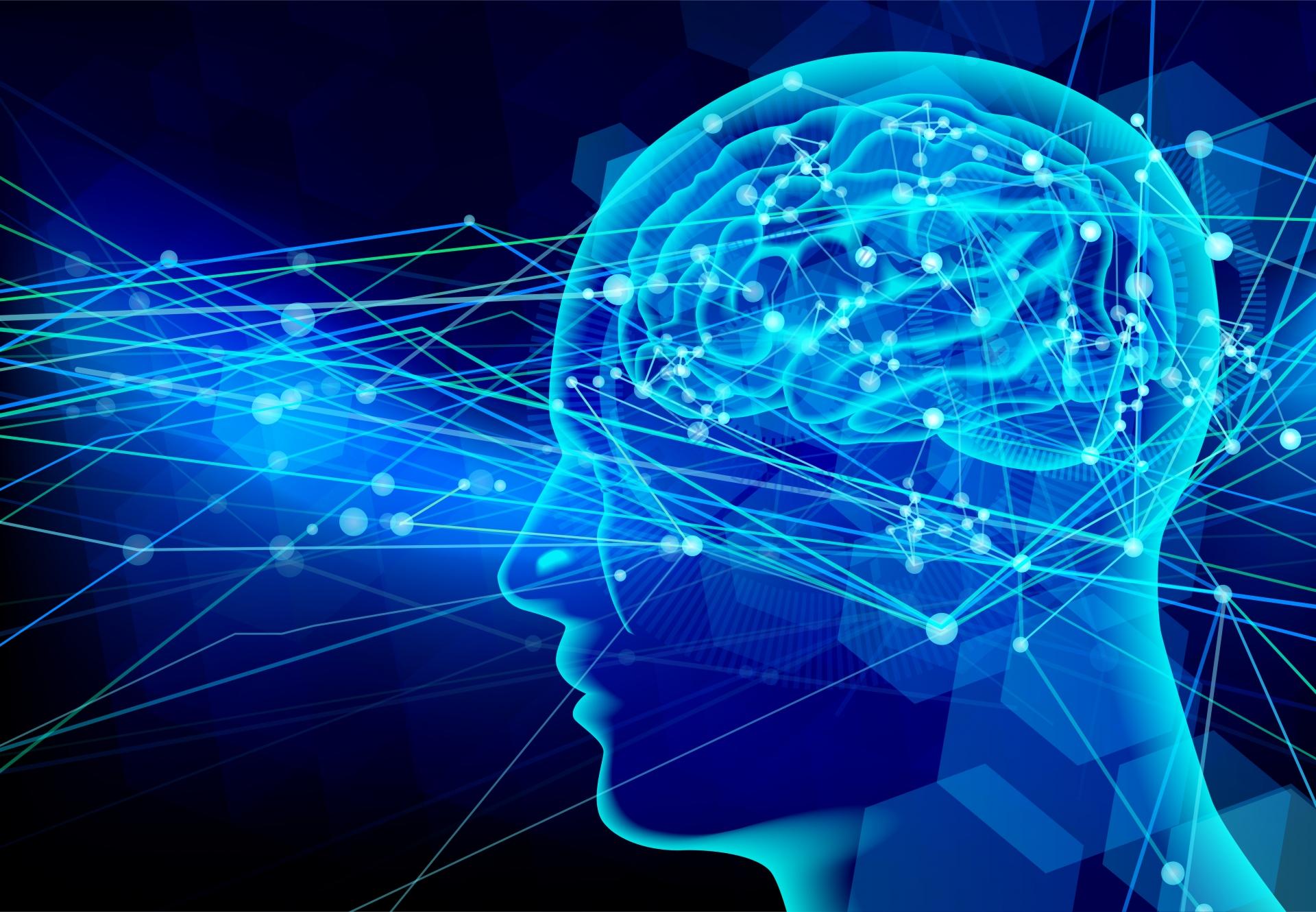 【京都大学がサイコパスを研究】嘘をつく脳のメカニズムが明らかに